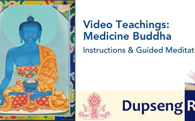 Medicine Buddha Module and Video teachings now online